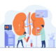Doctors conducting dialysis procedure for kidney treatment. Vector illustration for patient hemodialysis, healthcare, blood transfusion, internal injection, kidney disease concept